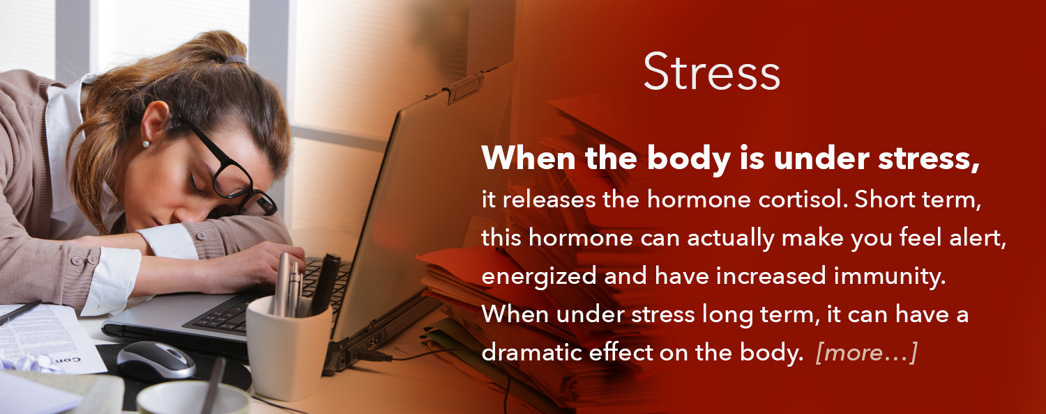 Amy Caparco, Holistic Belly Fat Solutions: Stress